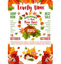 sale banner with autumn leaf fall season pumpkin vector image vector image