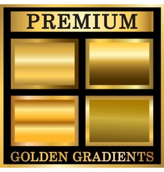 Gold texture in frame set vector image