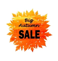 Autumn discount fall leaves vector