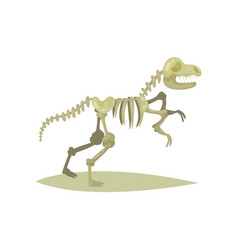 flat icon of dinosaur skeleton vector image