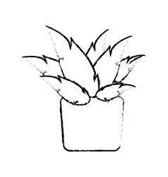 pot plant natural decoration ecology sketch vector image