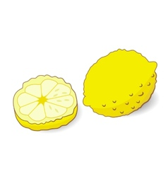 yellow lemon isolated vector image