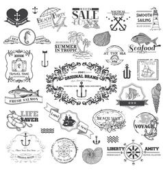 Nautical Sea Calligraphic Elements vector image vector image