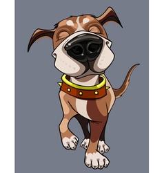 cartoon happy dog wearing a collar walks vector image