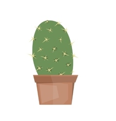Cactus isolated on white background vector image vector image