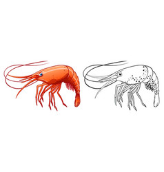 Animal outline for shrimp vector
