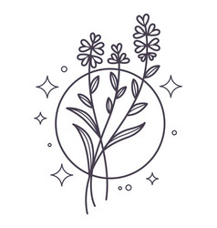Floral branches with blooming in circle line art vector