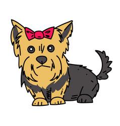terrier cartoon hand drawn image vector image