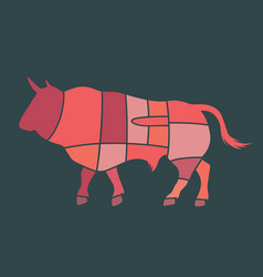 bull cuts vector image