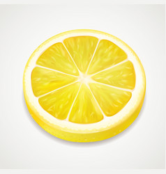 lemon juicy slice realistic fruit vector image