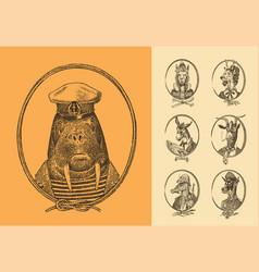 animal characters set sailor walrus llama deer vector image