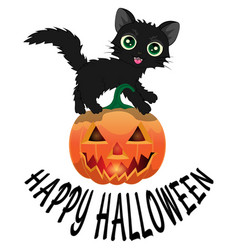 black cat and pumpkin for halloween4 vector image vector image