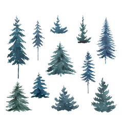 watercolor set with blue fir trees vector image