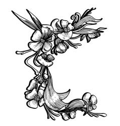baroque floral element vector image vector image