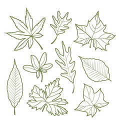 set of autumn leaves nature silhouette icon line v vector image vector image