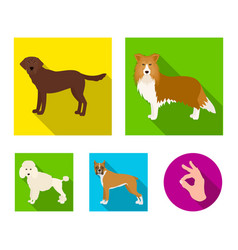 Dog laika beagle and other web icon in flat vector