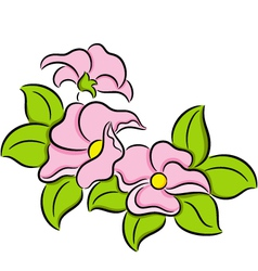 Fresh Flowers vector image