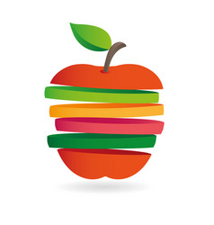 Fresh fruit slices colorful vector