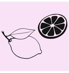 Lemon with leaf slice of lemon vector