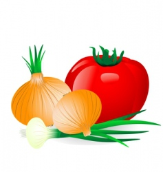 onion and tomato vector image vector image