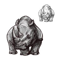 Rhino animal isolated sketch african rhinoceros vector