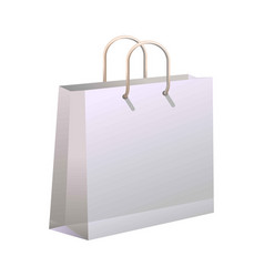shopping bag isolated on white vector image vector image