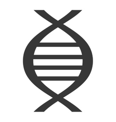 Black dna isolated icon on white vector image
