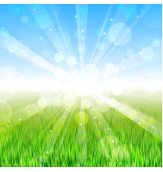 Summer day - background vector image vector image