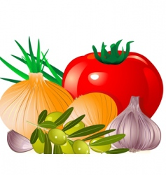 onion tomato garlic olive vector image vector image