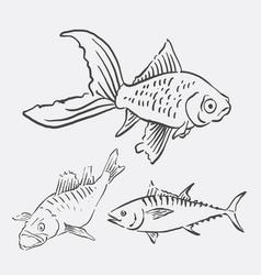 fish animal sketch vector image