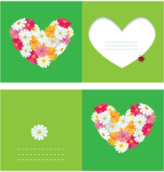 Heart is made of daisies on a green background vector image