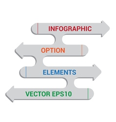 Infographic option elements vector image