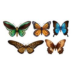 Mixed butterflies vector