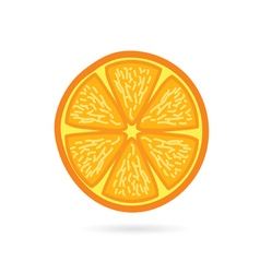 orange fruit slice vector image