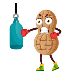 Peanut train hard on white background vector