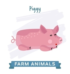 Pig isolated vector