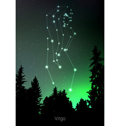 Virgo zodiac constellations sign with forest vector