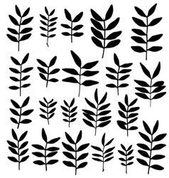 Set of branch silhouettes with leaves vector image