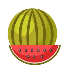 whole ripe watermelon and small slice isolated vector image