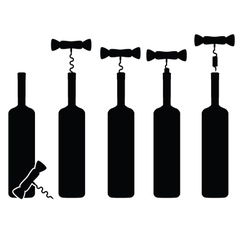 bottle of wine vineyard vector image vector image