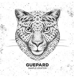hipster animal guepard hand drawing muzzle of vector image vector image