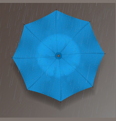 the top of the umbrella vector image