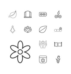 13 ornament icons vector image