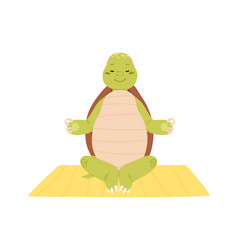 Cute and funny turtle exercising yoga or meditate vector
