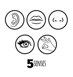 five senses outline icons of set vector image