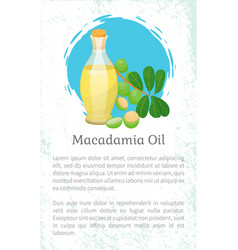Macadamia oil in vessel maroochi nuts near bottle vector