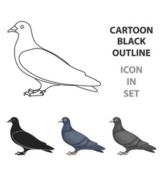 pigeon icon in cartoon style isolated on white vector image