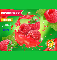 raspberry juice package design with juice splash vector image