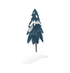 snowy fir-tree for seasonal vector image