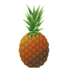 Whole pinapple icon vector